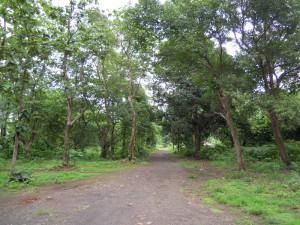 Way to Ishwarpuri